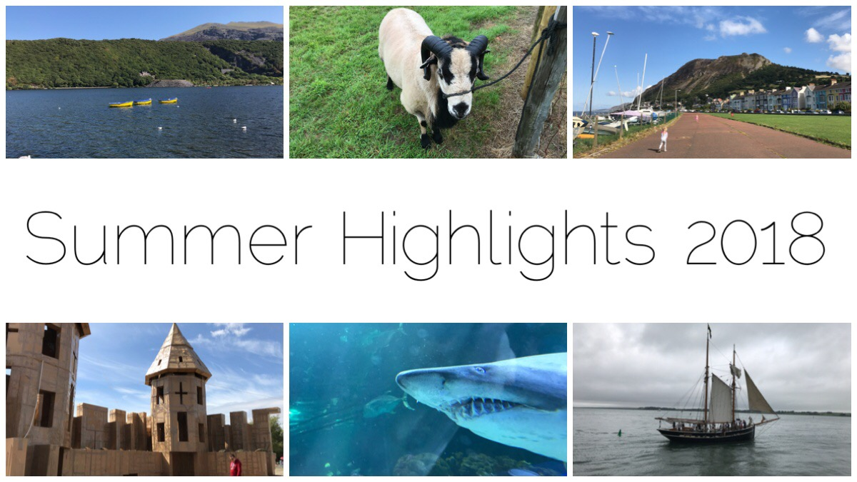 Six images from our Summer highlights reel