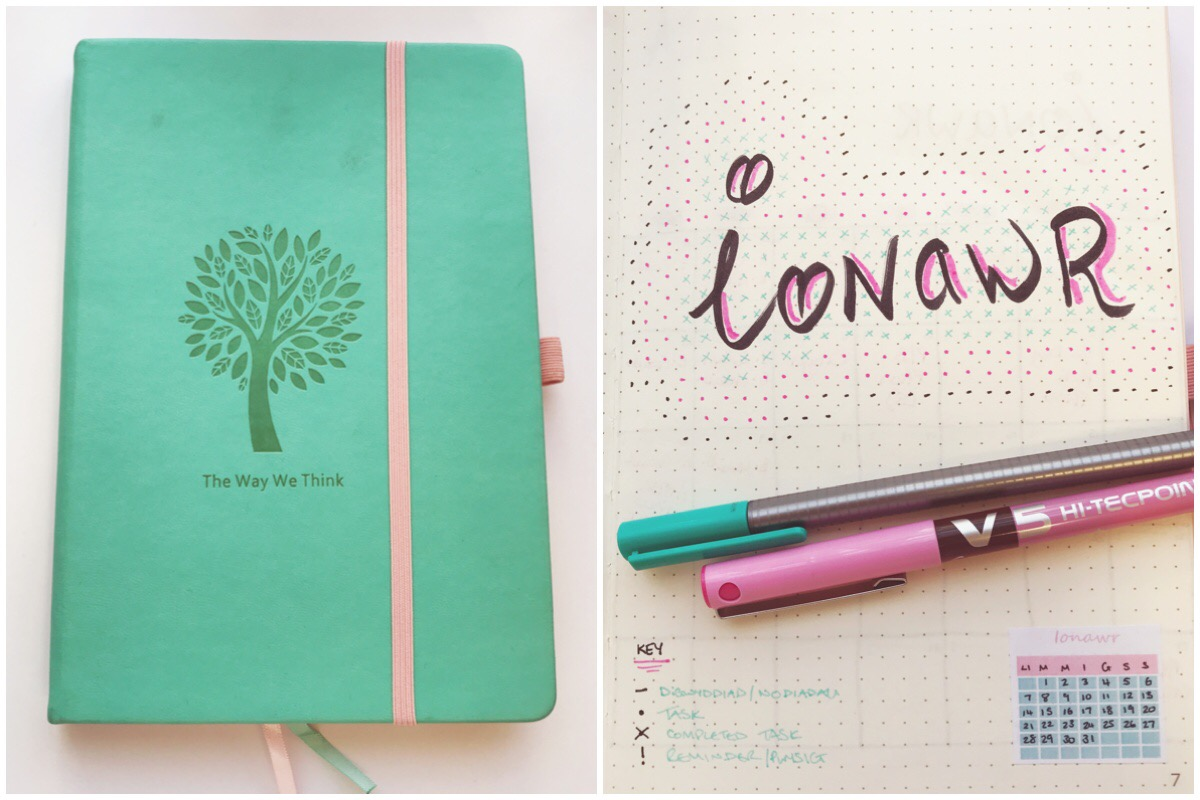 My Lemome notebook and my January cover page