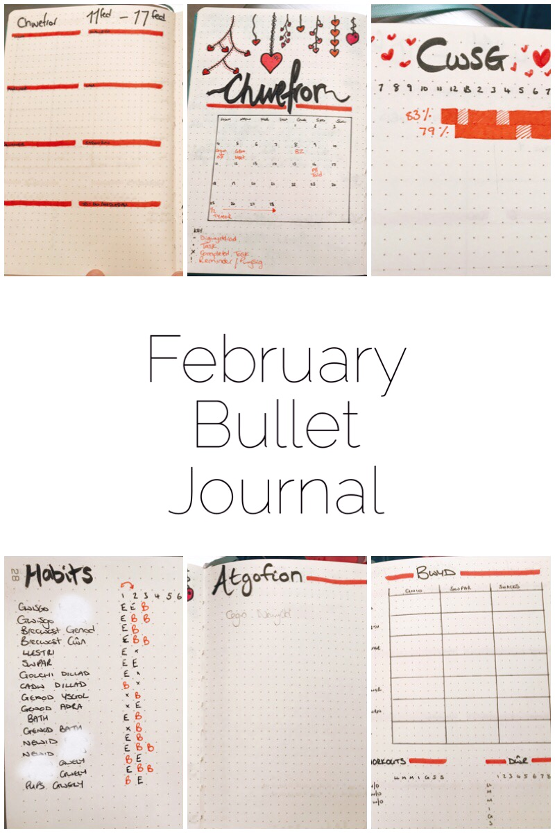 Take a sneak peak through my February Bullet Journal! I show you my setup for February which is of course a Valentine's themed layout.