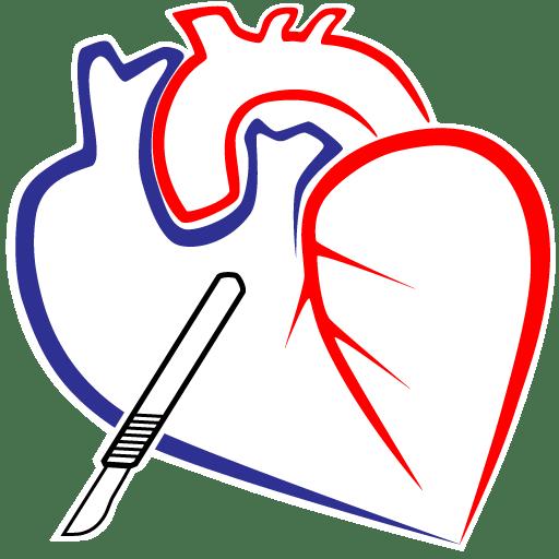 Bedah Kardiovaskular