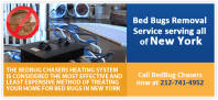 Want to GET RID OF BED BUGS Brooklyn Queens NY in JUST ONE DAY
