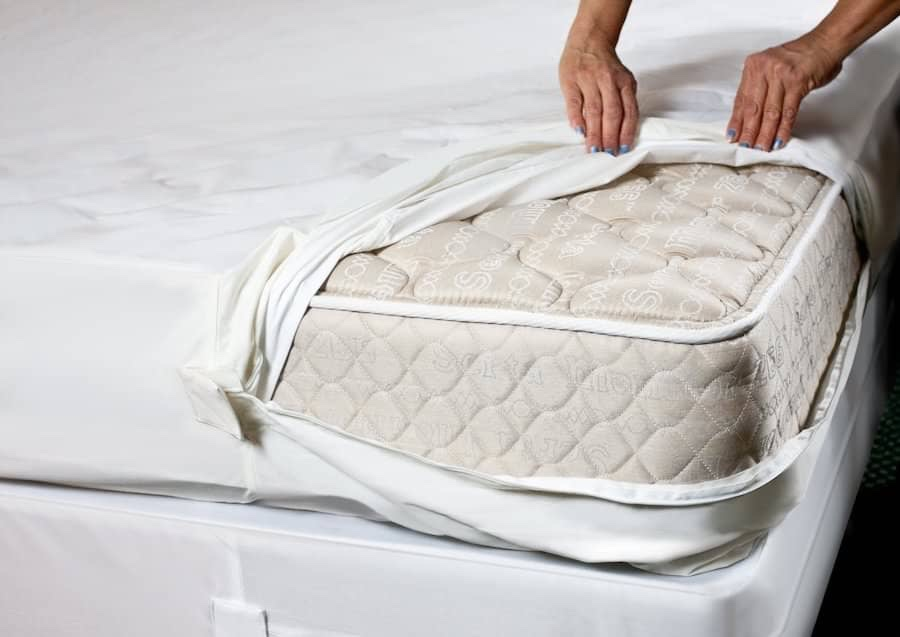 Bed bug mattress or box spring cover. Bed bug covers completly zip up to seal any bed bugs inside and keep them out. There are couch and chair covers available online too.