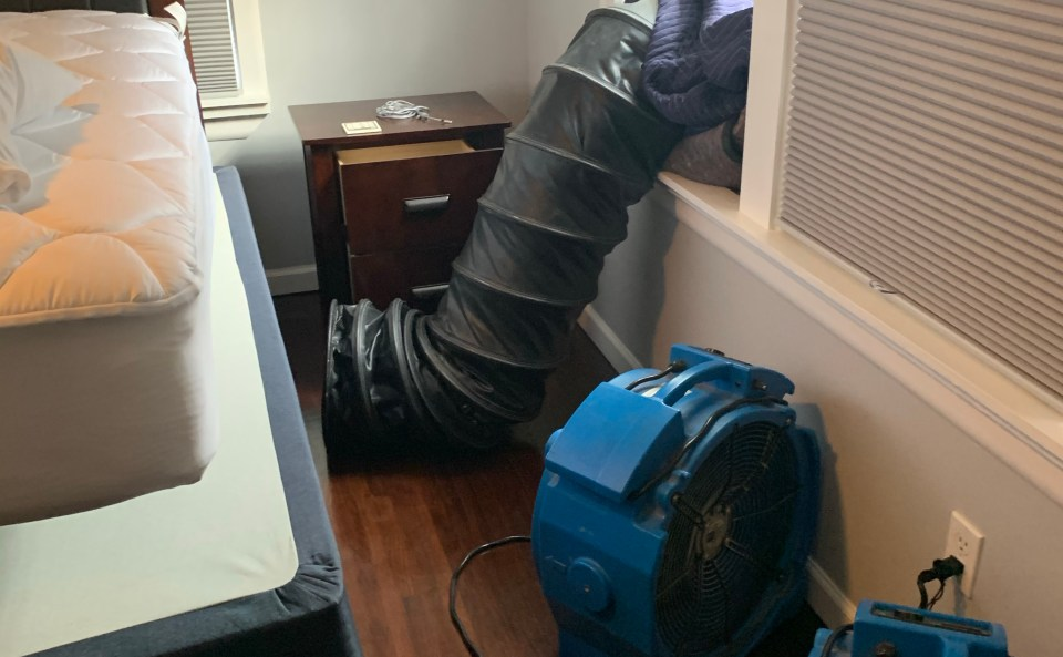 , Can batteries go through a bed bug heat treatment?
