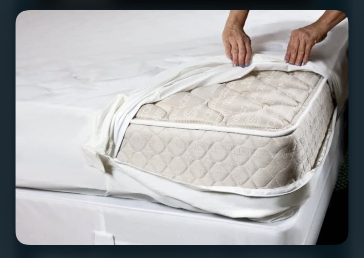 Bed bug encasement or cover. Dead Bug Walkin LLC