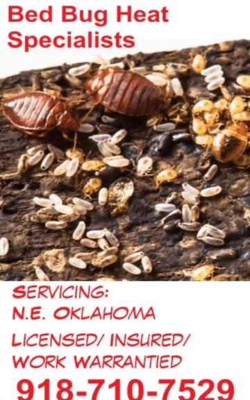 Dead Bug Walkin LLC Bed Bug Heat Treatment Specialists Pest Control Tulsa Metro