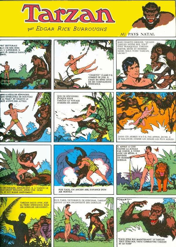 Tarzan Seigneur De La Jungle : tarzan, seigneur, jungle, Tarzan, (Azur)-, Seigneur, Jungle