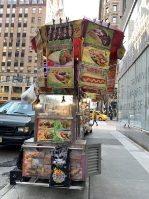 How NYC's Broken Food Cart System Leaves Vendors Scraping By - PUNCHLAND 4