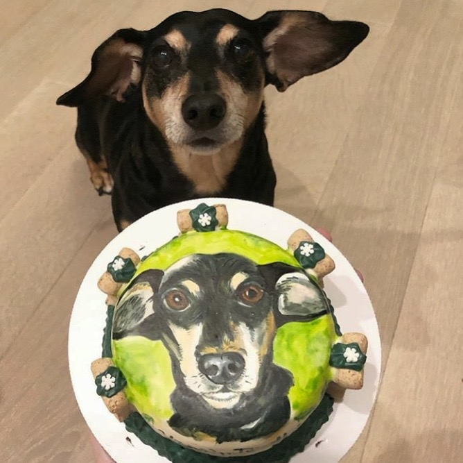 Admirable This Baker Makes Dog Portraits That Your Pup Can Wolf Down Funny Birthday Cards Online Inifodamsfinfo
