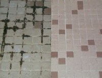 Dealing with Mould and Mildew on Grout | Grout Protection