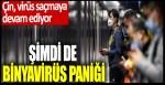 Çin virüs saçmaya devam ediyor! Şimdi de Bunyavirüs paniği