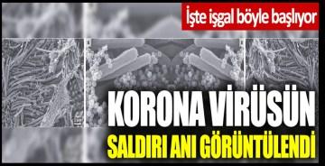 İşte işgal böyle başlıyor: Korona virüsün saldırı anı görüntülendi