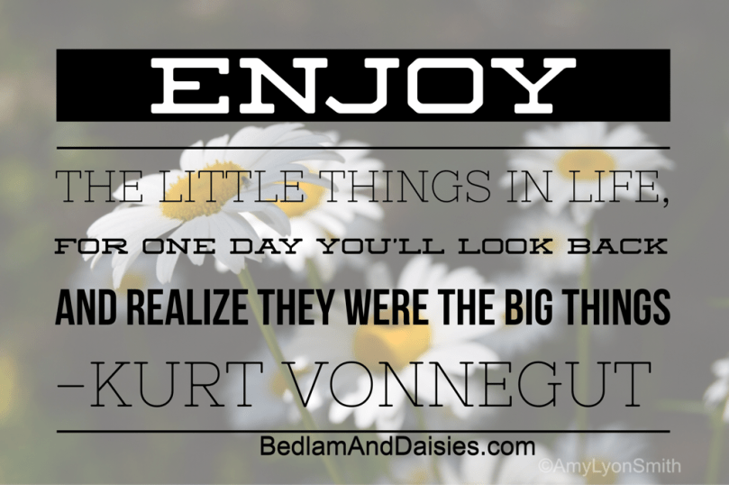 Enjoy the little things in life, for one day you'll look back and realize they were the big things- Kurt Vonnegut quote with daisies in the background