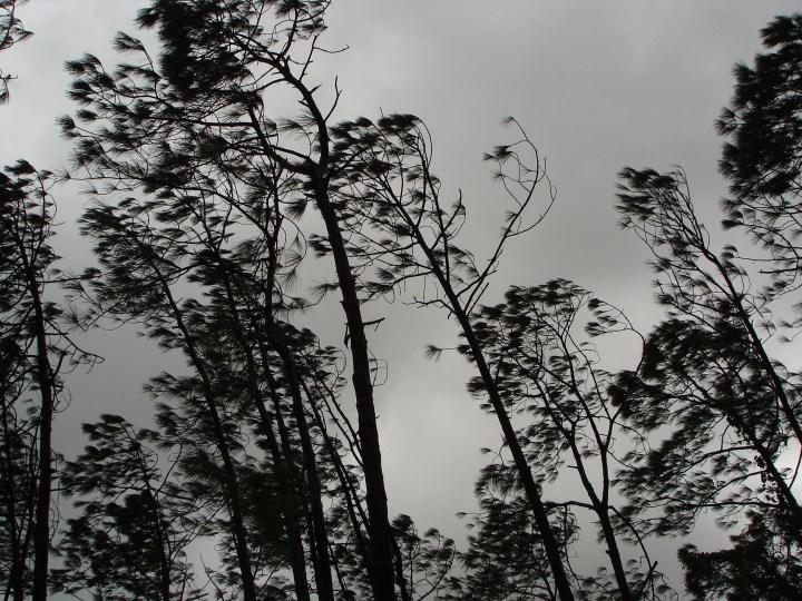 Hurricane Wilma 2005 in Naples, Florida