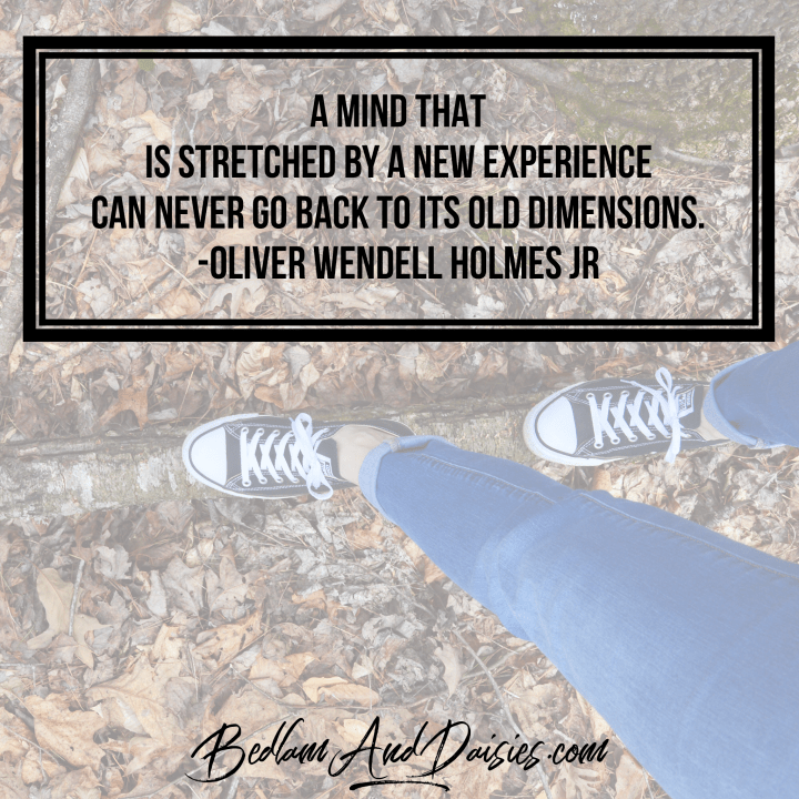 A mind that is stretched by a new experience can never go back to its old dimensions - Oliver Wendell Holmes Jr quote