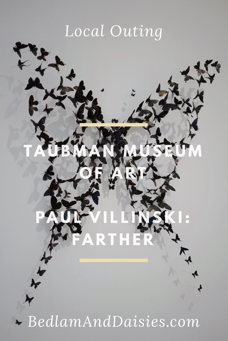 Local Outing at the Taubman Museum of Art featuring the exhibition Paul Villinski: Farther