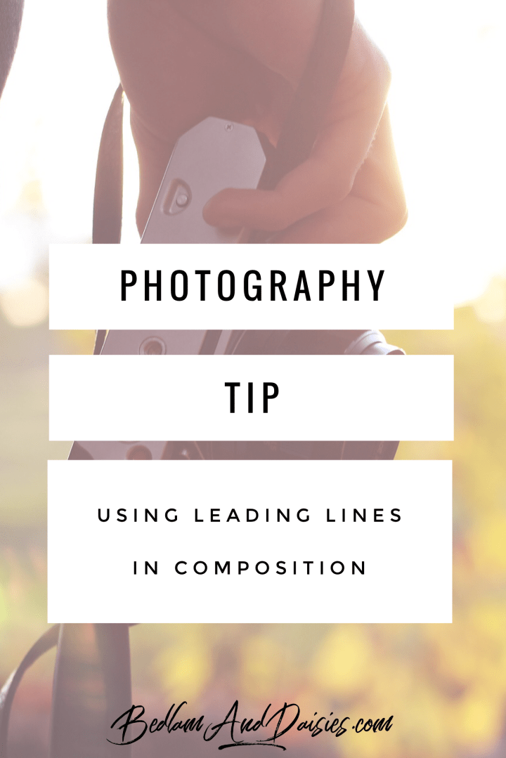 Photography Tip Using Leading Lines in Composition