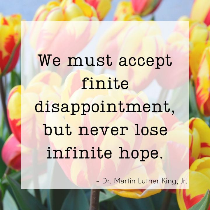 We must accept finite disappointment, but never lose infinite hope. - Dr. Martin Luther King, Jr.