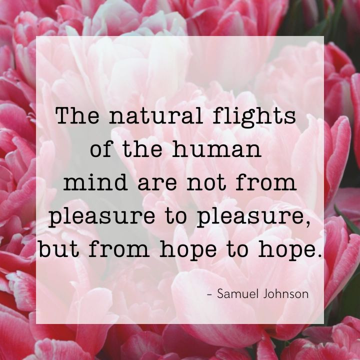The natural flights of the human mind are not from pleasure to pleasure, but from hope to hope. - Samuel Johnson