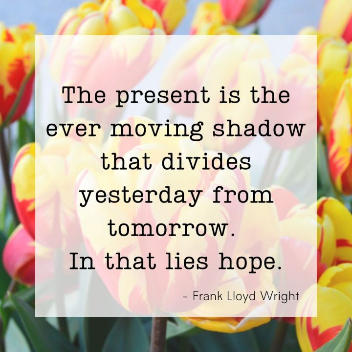 The present is the ever moving shadow that divides yesterday from tomorrow. In that lies hope. - Frank Lloyd Wright