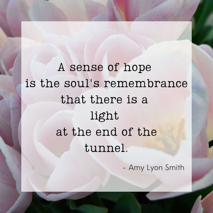 A sense of hope is the soul's remembrance that there is a light at the end of the tunnel. - Amy Lyon Smith