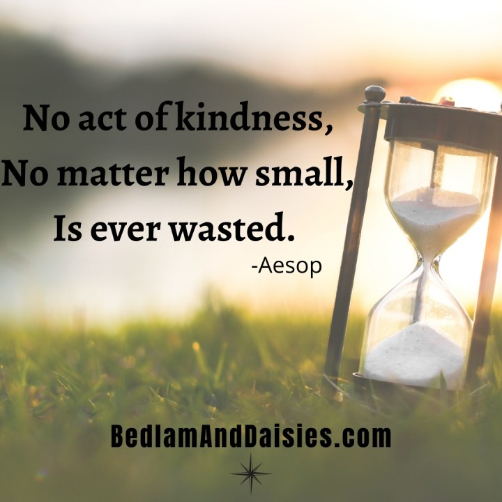No act of kindness, No matter how small, is ever wasted. -Aesop