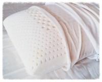 Plein Air Latex Pillow