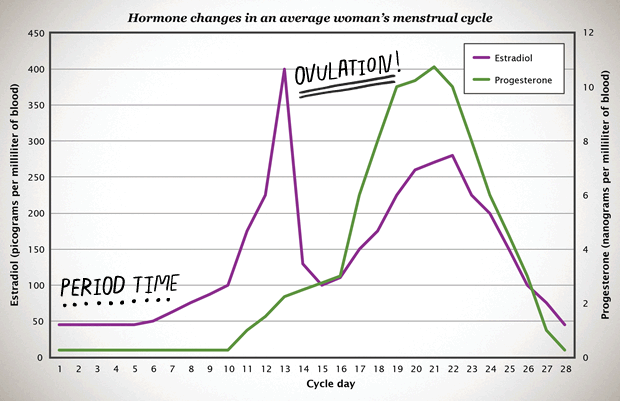 What are typical female hormone levels also all about hormones bedsider rh