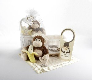Best Gifts For New Baby - Baby Aspen Gift Set