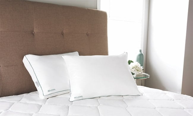 pillows have features that consumers