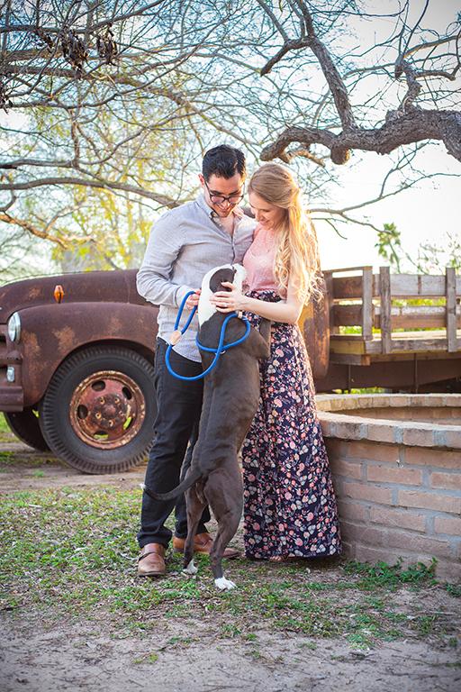 pet friendly memory lane photo spot