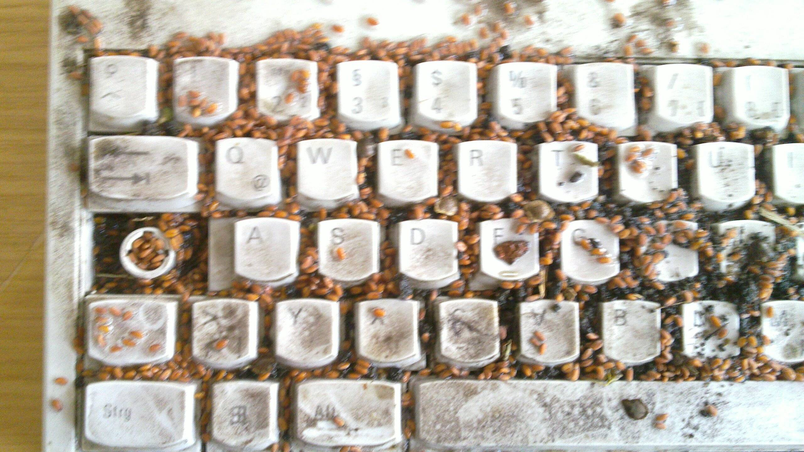 how to clean really dirty keyboard