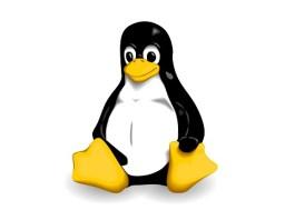 Unix vs Linux