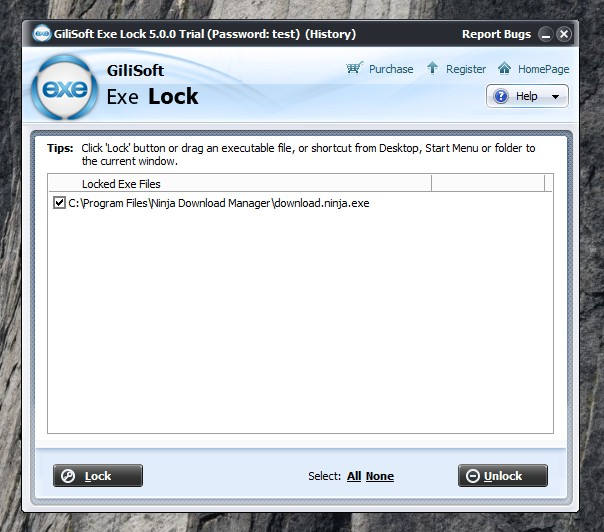 Блокировка GiliSoft EXE