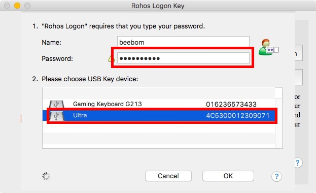 enter password select usb drive