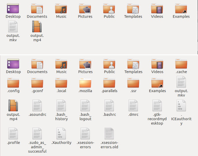 show hide hidden files in file manager ubuntu
