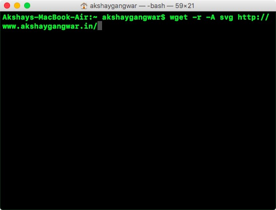 use wget to download specific filetypes