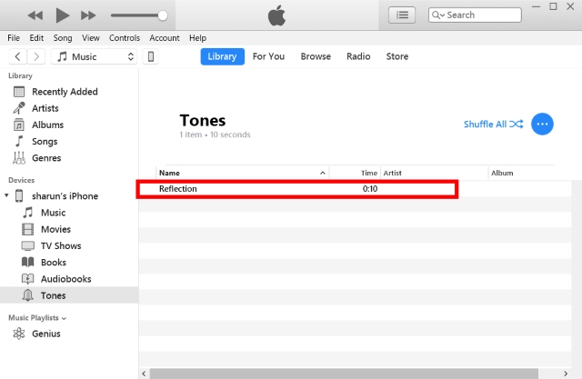 Add Reflection to iTunes