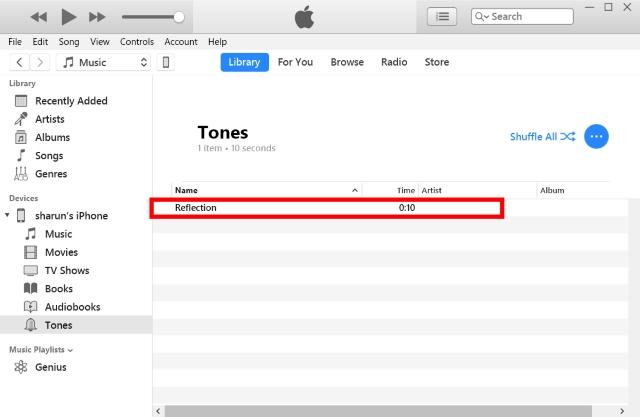 Agregar reflejo a iTunes