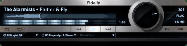 9. Fidelia