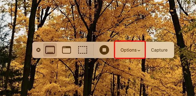 Herramienta de captura de pantalla macOS Mojave que muestra opciones