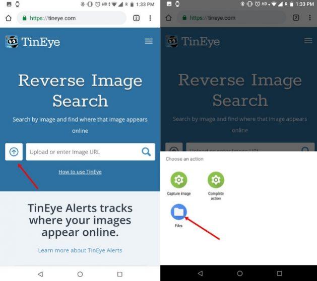 Обратный поиск изображений на телефоне с TinEye (iOS и Android) 1