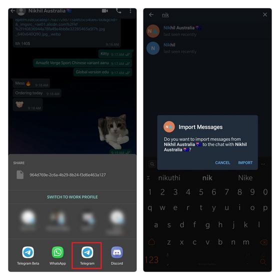 elegir destinatario de importación en la hoja para compartir de Telegram