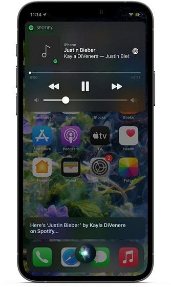 Изменить музыку по умолчанию на iOS и iPadOS