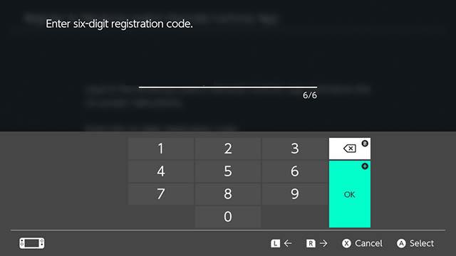 введите регистрационный код Nintendo Switch