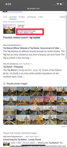 Buscar información de imágenes: búsqueda inversa de imágenes en iPhone