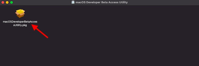 macOSDeveloperBetaAccessUtility