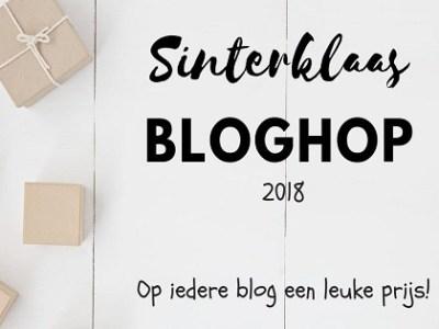Win Zwemavonturen Ariël | Sinterklaas Bloghop