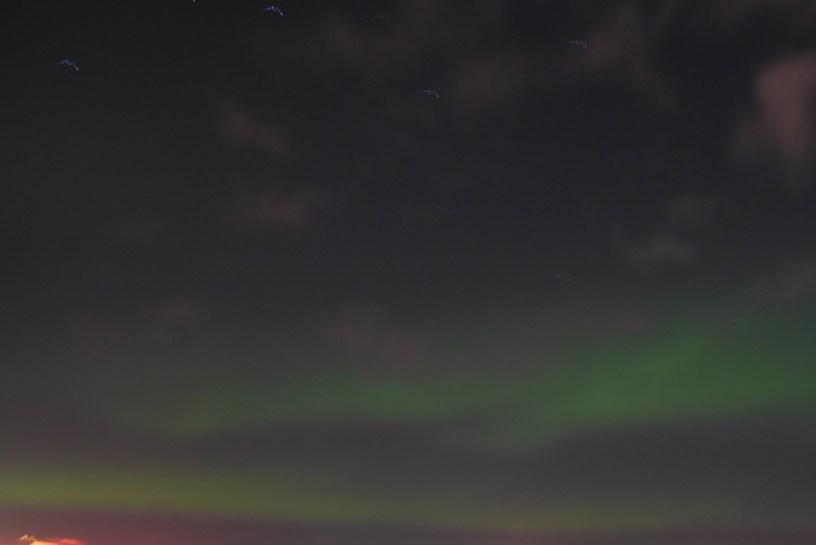 Northern lights pver Reykjavik