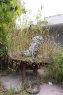 Rooftop workshop photo 2
