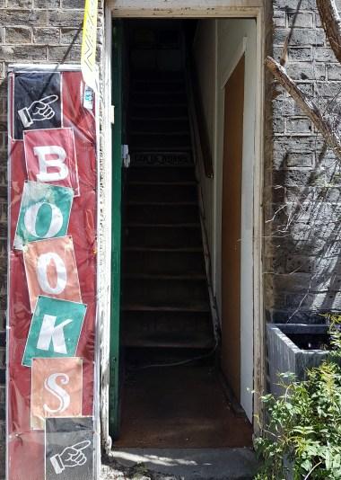 Tiny Owl Publishers Peacock Yard